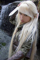 Mirkwood Elf 8 by Liancary-art