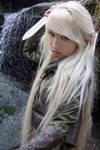 Mirkwood Elf 8