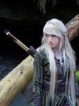 Mirkwood Elf 10