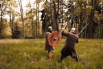 Viking fight - Stock