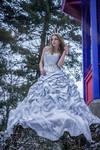 Ice bride - stock