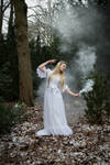 Forest Fairy - Stock