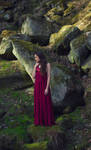 Red Dress Stock 1 by Liancary-art
