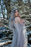 Faerie Queen - Stock 1 by Liancary-art