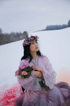 Asian Beauty in Winter - Stock