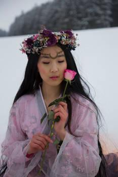 Asian Beauty in Winter - Stock 2