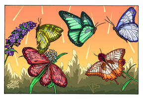 Butterfly Package COLORS by Brainstorm-bw-style