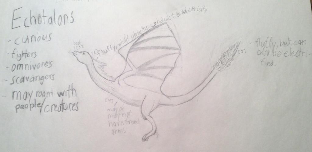 Echotalon dragon thing by LlamaLlama125
