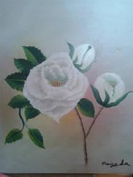 White Rose in Oils by mimi-memo