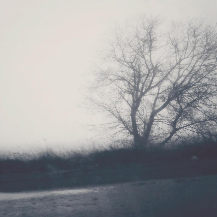 On the road by StevenOilson
