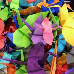 Rainbow Cranes by jadeboylan