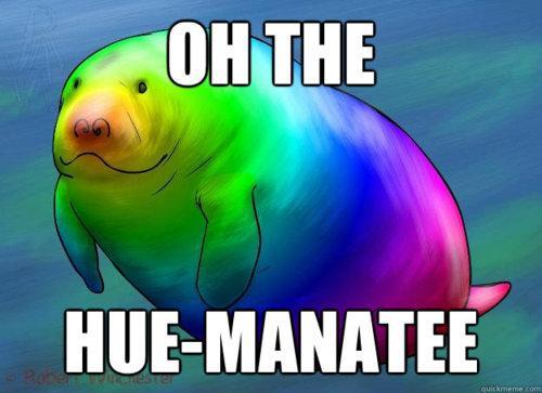 OH THE HUE-MANATEE by WisherMadeAWishFall