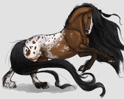 Friesaloosa by Horseyperson