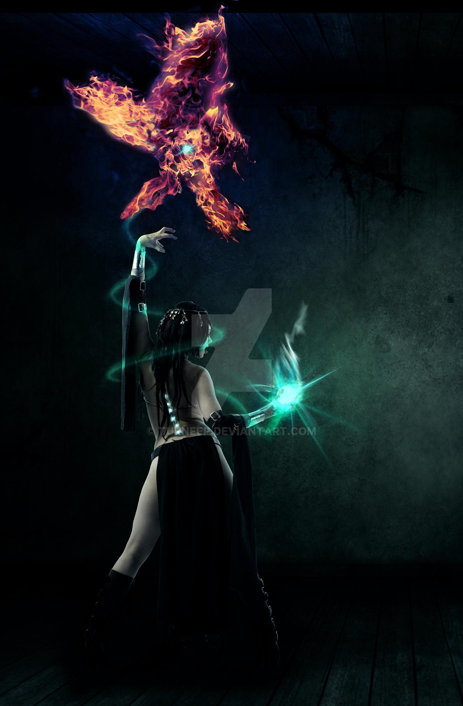 Phoenix Wizard