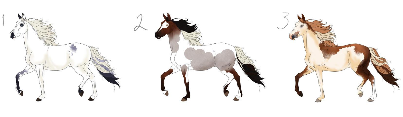 stallionadoptable explore stallionadoptable on deviantart
