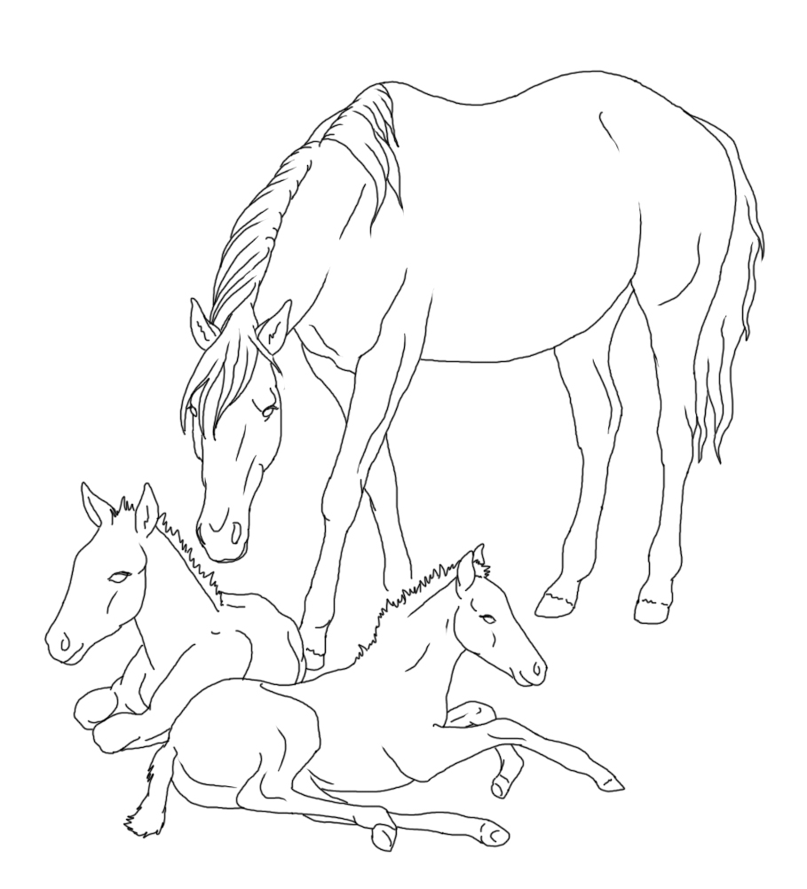 mare with twin foals lineart by rainbowfountains on deviantart