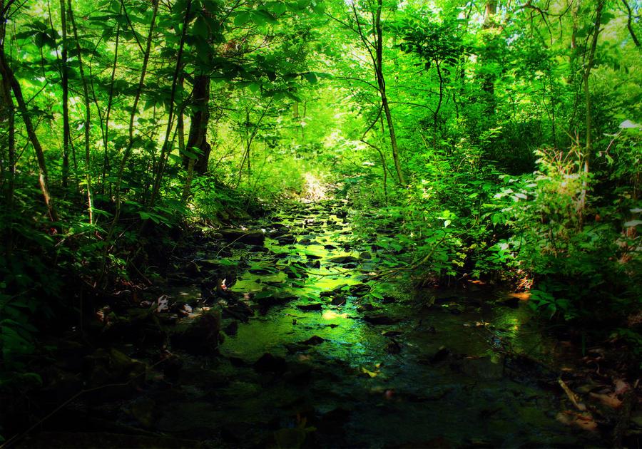 Creek of Envy