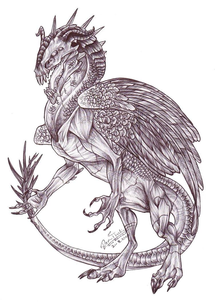 Dragon Warrior by Dae-Thalin