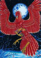Phoenix Flame by Dae-Thalin