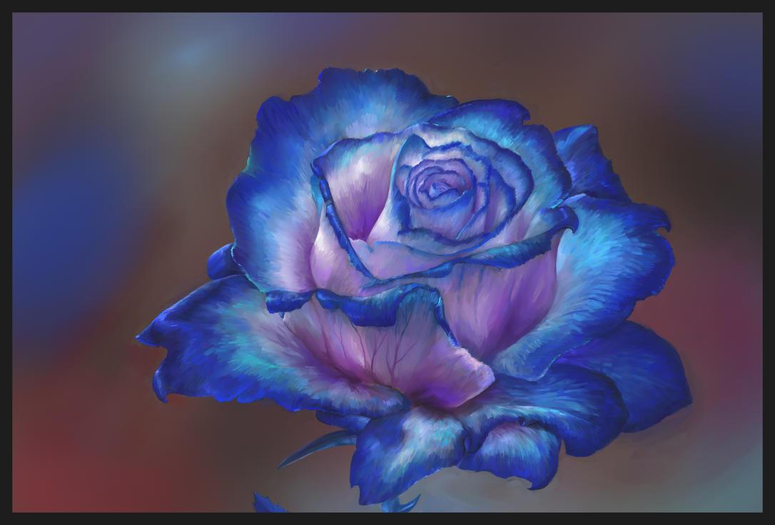 Blue rose study by Theocrata