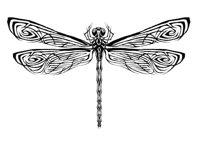 Dragonfly Tattoo 1 - dragonfly tattoo