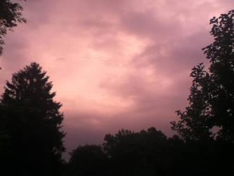 Pink Sky by Felllovescats