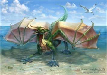 Vacation Dragon