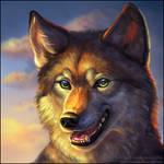 Wolf Square Portrait