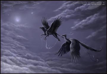 Night flight by Red-IzaK