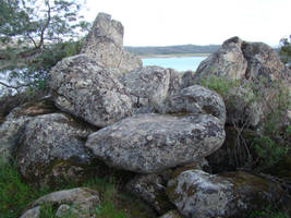 rocky by Anakmoon-Stockage