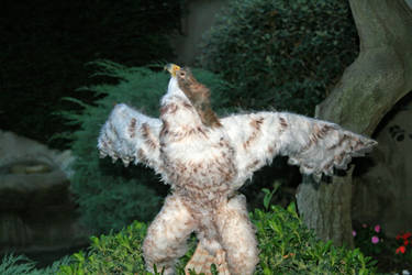 red tailed hawk sculpture open wings
