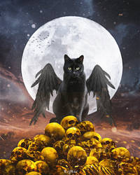 The cat of the dead