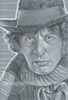 059/365 - Tom Baker as Dr Who by BikerScout