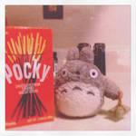 Totoro Loves Pocky Sticks