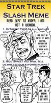 Star Trek Slash Meme