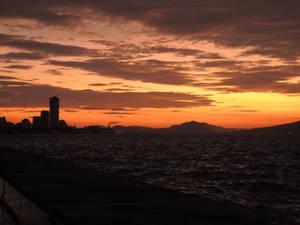 Seaside Momochi Silhouette