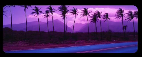 F2u purple palmtrees by JERE-AQUATIC