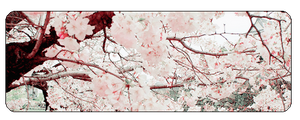 F2u Cherry Blossom