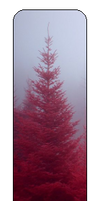 F2u Red Tree