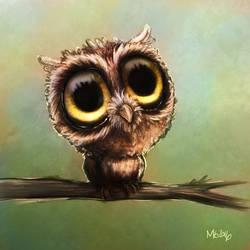 Inktober owl, colours