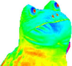 NotAGoodArtDrawer's Profile Picture
