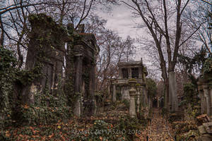Old Jewish Cemetery III. by rembo78