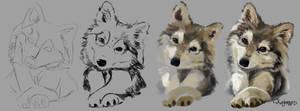 Wolfy by Kajenna