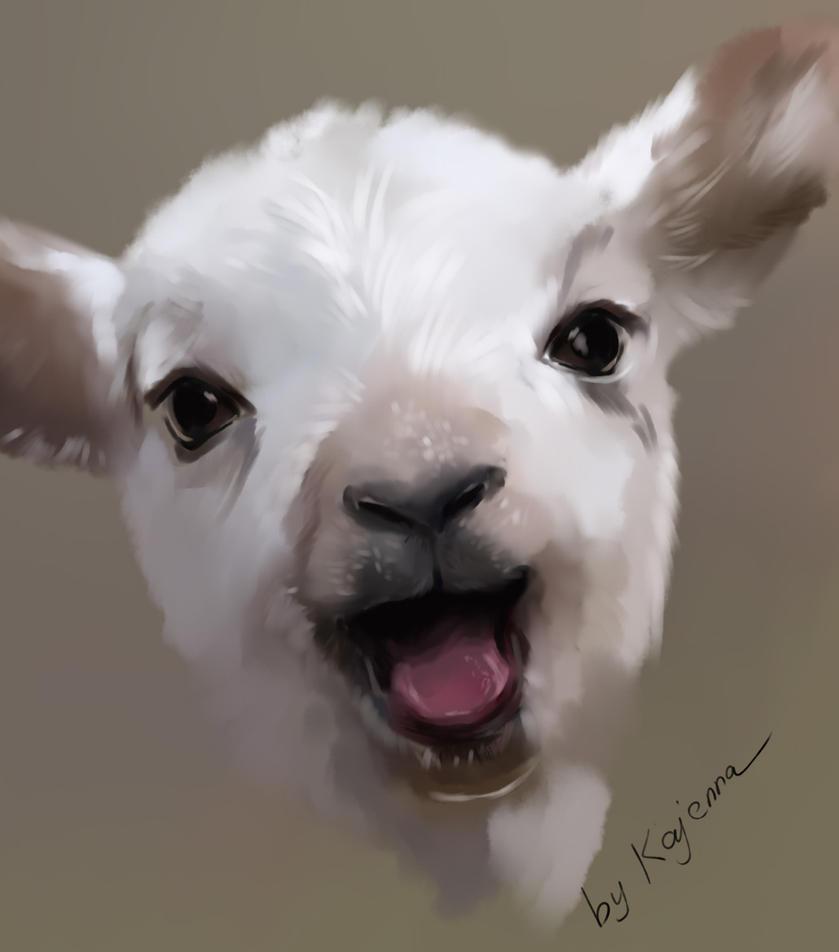 Sheep by Kajenna