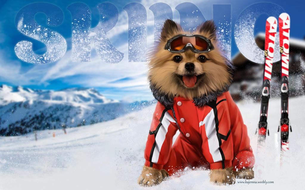 Skier by Kajenna