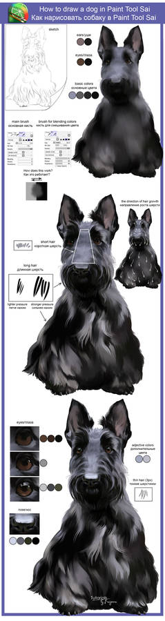How to draw a dog in Paint Tool Sai