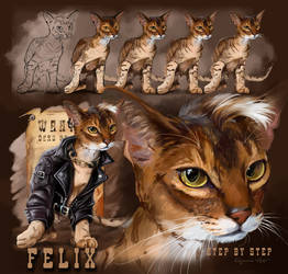 Felix  (step by step)