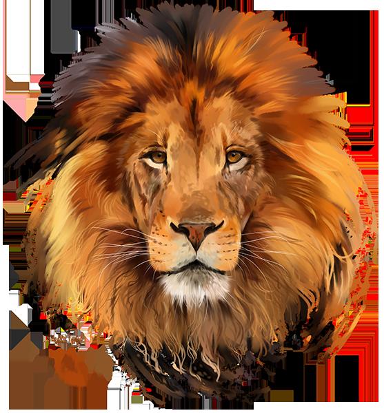 lion by kajenna on deviantart