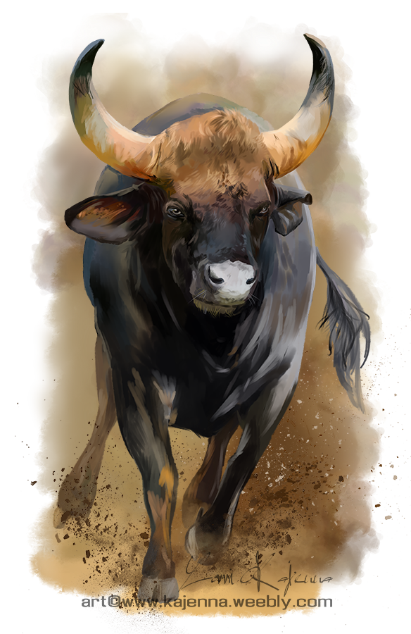 Bull by Kajenna
