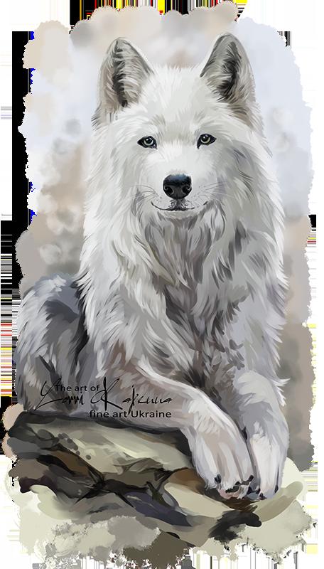 White wolf by Kajenna